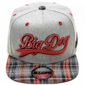 Boné Multcaps MXC Snapback Big Dog Original Cinza