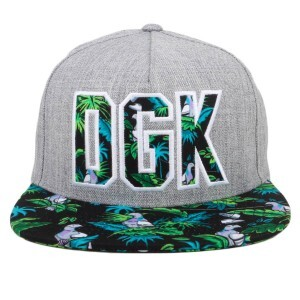 Boné DGK Snapback By The Beach Cinza/Preto