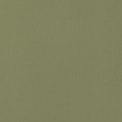 Papel Cardstock Texturizado 180g 30,5 x 30,5 - Olive