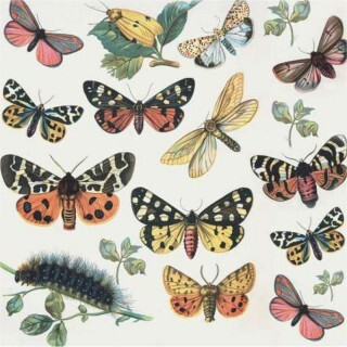 Papel Butterflies - Art Unica - 30,5x30,5